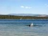 Vattenreservoaren El Atazar erbjuder härliga badmöjligheter under sommaren.
