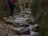 En av de vackraste avsnitten mellan Sarria och Portomarín, Lugo. Ganska svårpasserat dock, med våta, halkiga stenar.