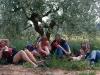 Ett försök att hitta skugga. En välbehövlig paus under ett olivträd, den enda skuggiga plats vi hittade.