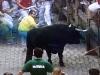 Många försök görs för att få tjuren att fortsätta mot tjurfäktningsarenan