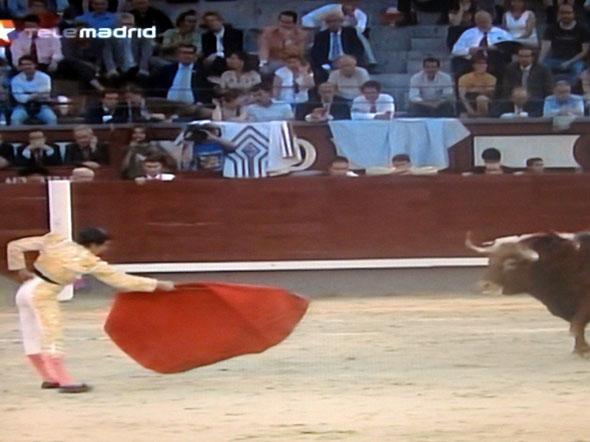 Tjurfäktning är en viktig del av fiestan San Isidro i Madrid, här på inledningsdagen 7 maj 2009
