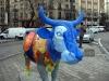 En sån här ko gör mig riktigt glad! Fotad vid Plaza de Neptuno den 30 januari.