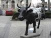 Ytterligare en kossa nära Puerta de Alcalá