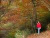 Höstens färgprakt i östra massivet.