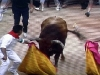 Den sista tjuren med namnet Cachero lockas in i fållan bakom tjurfäktningsarenan