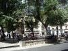 Många söker skugga under träden på Plaza de Zocodover.