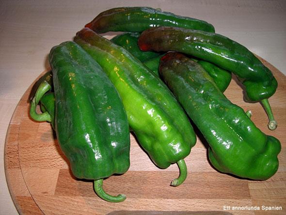 Denna typ av avlånga paprikor kallas för pimientos italianos (italienska paprikor) i Spanien, och de lämpar sig utmärkt för stekning.